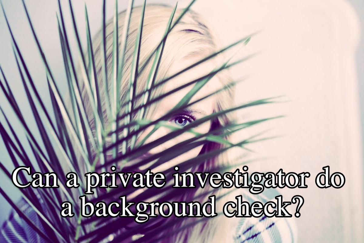 Can a private investigator do a background check?