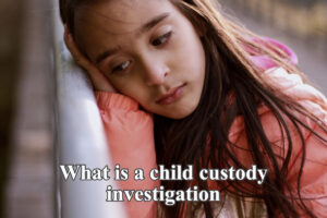 Child custody investigation Georgia
